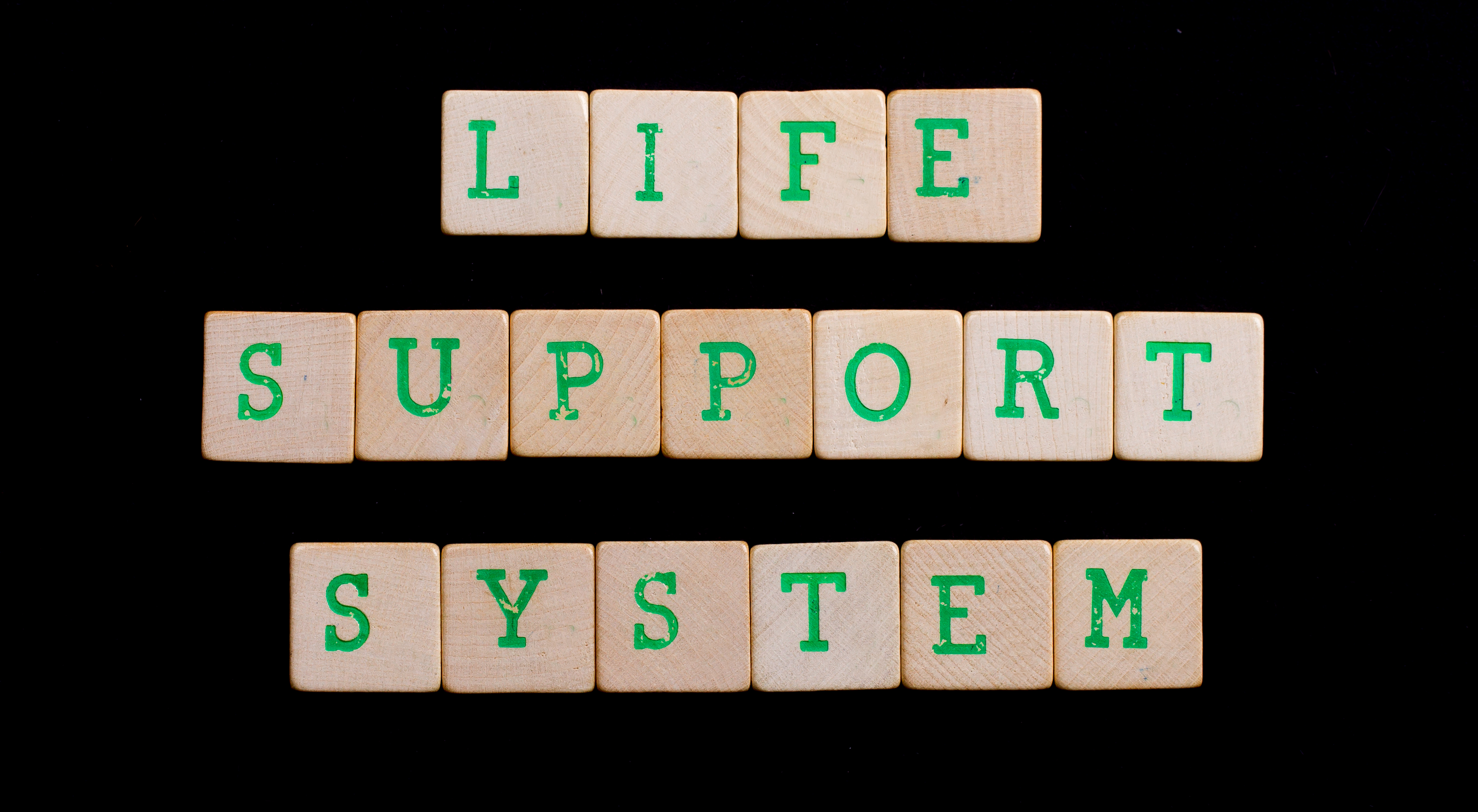 Life Support System Spelled Out With Wooden Blocks